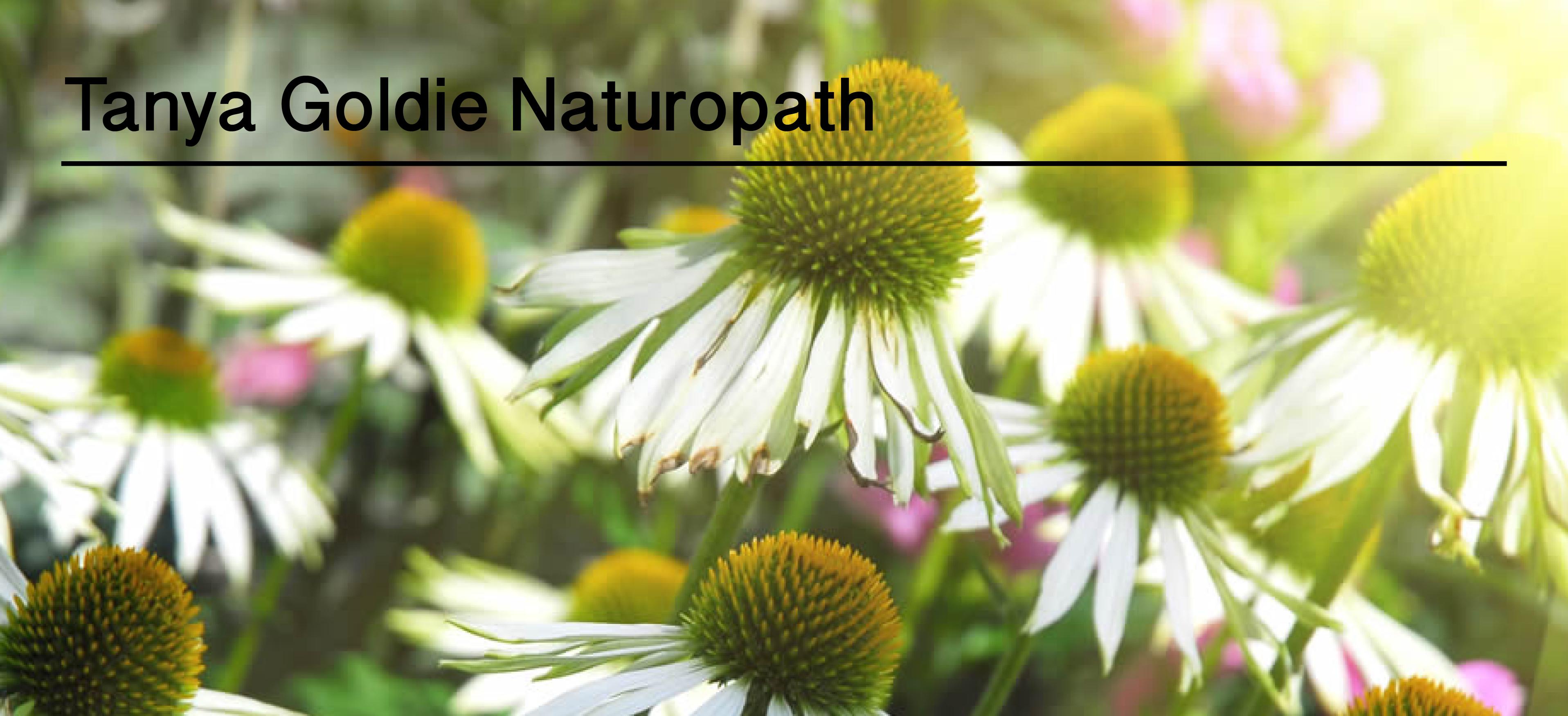 Tanya Goldie Naturopath