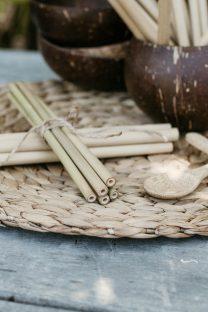 Mayella Natural Bamboo Juice Straw